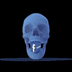 אינתיפאדת הפייסבוק